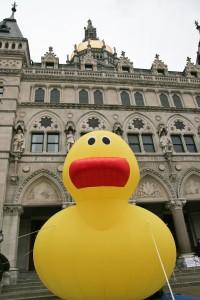 CHSC Ducky (7 of 115) (2)